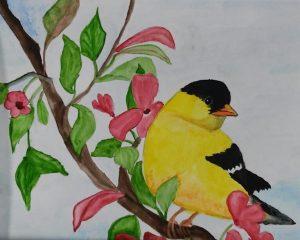 Watercolors Beginner t Intermediate