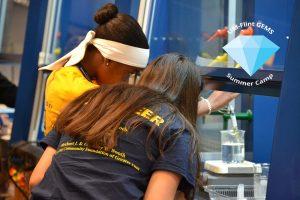 UM-Flint GEMS: Science, Engineering, & Math Su...