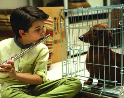FOMA Film: Wiener-Dog